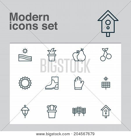 Farm Icons Set. Collection Of Protection Mitt, Lantern, Helianthus And Other Elements