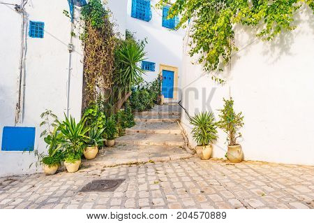 Sidi Bou Said, famouse village with traditional tunisian architecture. White walls with flower pots and blue windows.