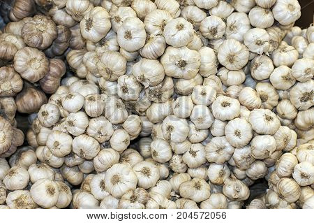 garlic market ingredient raw natural market closeup
