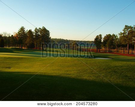 Fall Carolina Golf Green Lined by Pine Trees