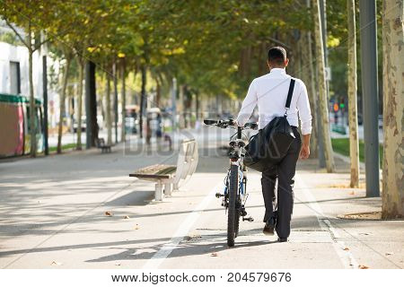 Back view of businessman walking with shoulder bag and bike in park. Young male office employee having stroll in park after work. Lifestyle concept