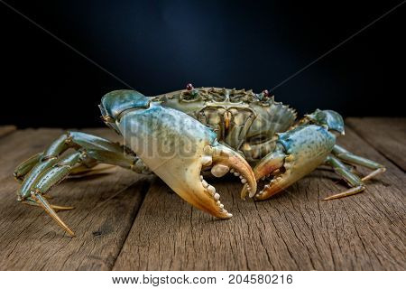 Meat crab is a raw material for cooking.