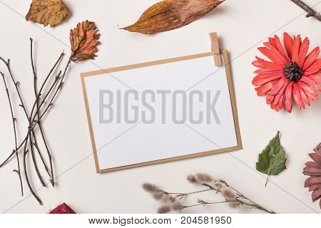 Paper Card Or Invitation And Autumn Plants