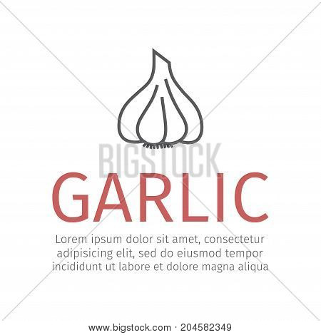 Garlic sign Vector icon for web graphic.