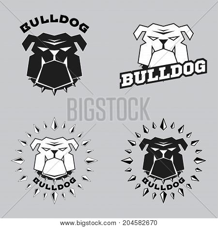 Set logo bulldog head. Vector illustration head ferocious bulldog
