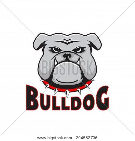 Logo bulldog head. Vector illustration head ferocious bulldog mascot, on a white background