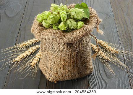 Beer Brewing Ingredients Hop Cones In Sack And Wheat Ears On Dark Wooden Background. Beer Brewery Co