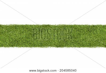 Green fresh grass or turf strip on white background