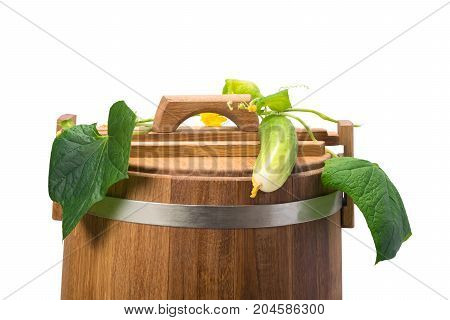 on the oak barrel is a fresh cucumber with a tops