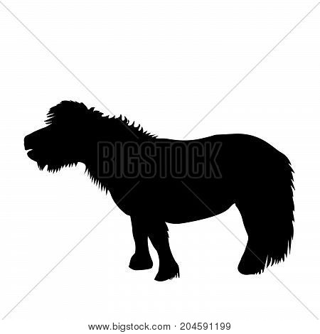 Illustration of a black pony silhouette on white background