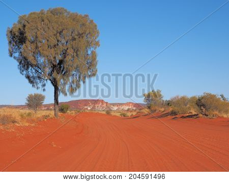 Desert oak lined red sandy track and Rainbow Valley Northern Territory Australia 2017