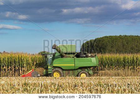 Combine Harvester Cutting Corn