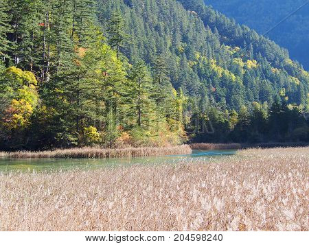 Beautiful Jiuzhaigou. Nature Reserved. National Park. .chengdu , Sichuan, China.