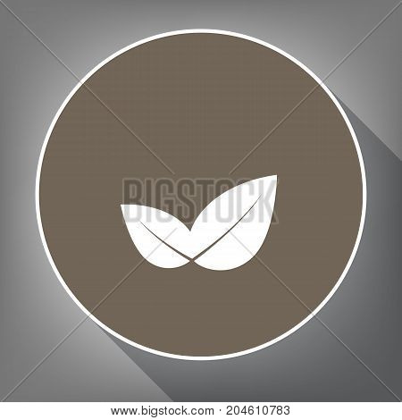 Leaf sign illustration. Vector. White icon on brown circle with white contour and long shadow at gray background. Like top view on postament.
