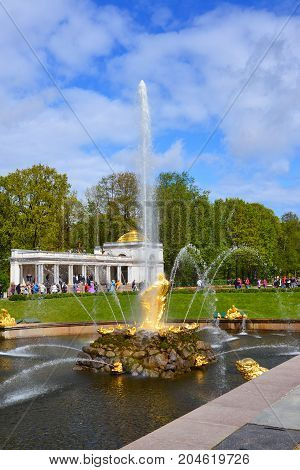 Peterhof, Russia - June 03. 2017. Samsons fountain tearing the jaws of a lion