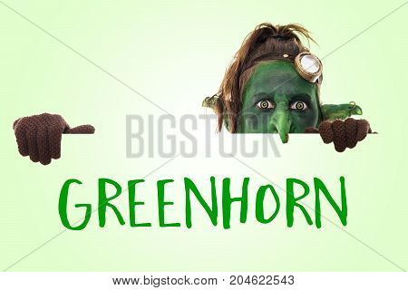 Little Funny Goblin With The English Word Greenhorn