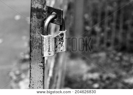 Metal Lock On The Fence In The Park