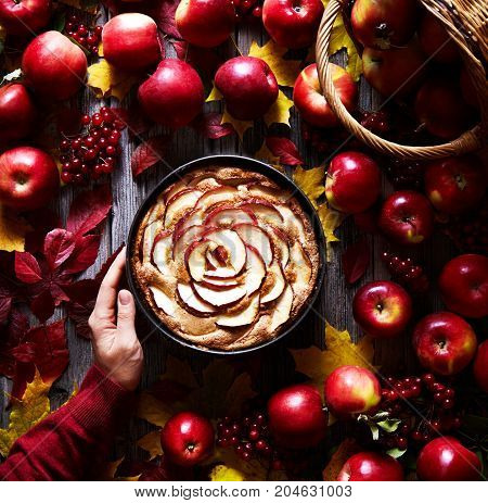 Apple pie delicious autumn or winter pastries in a woman's hand. Autumn dish mood. The frame is decorated with leaves and apples. Flat lay food composition. Top view. Square image