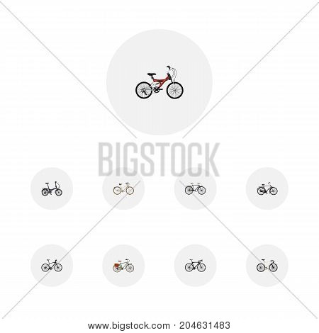 Realistic Working, Fashionable, Exercise Riding And Other Vector Elements