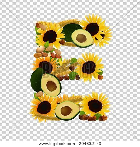 Vitamin E vector illustration. Foods containing vitamin E in a shape of letter E. Source of vitamin E - nuts, corn, vegetables isolated on a transparent background