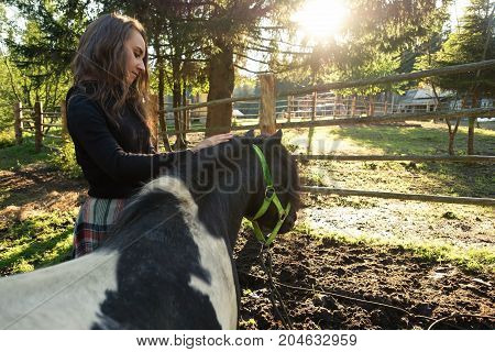 Woman taking care over black pony with long hair in the field. A pony is a small horse, he has thick mane, tail and shorter legs.