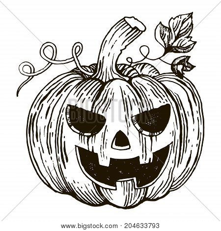 Halloween pumpkin engraving vector illustration. Jack o lantern. Scratch board style imitation. Hand drawn image.