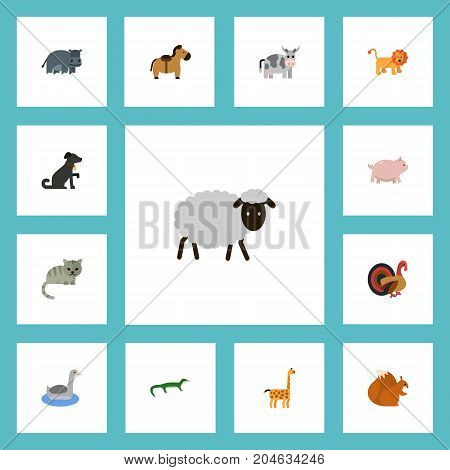 Flat Icons Kine, Chipmunk, Hound And Other Vector Elements