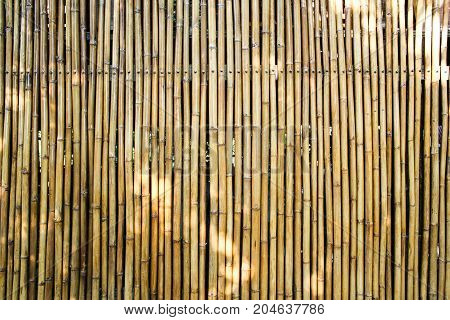 bamboo wall background or bamboo wood background