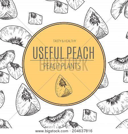 Hand drawn sketch style seamless peach fruit.