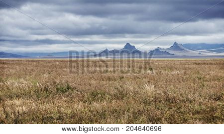 Vast wheat field and rocky mountains in Northern Mongolia