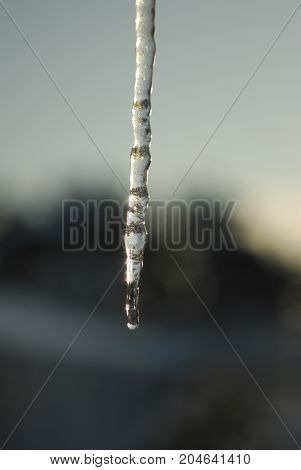 An icicle with water running off the end
