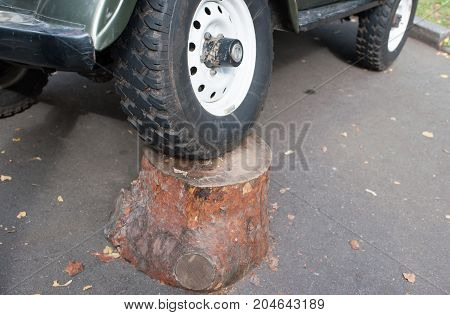 The wheel of a car on a tree stump.