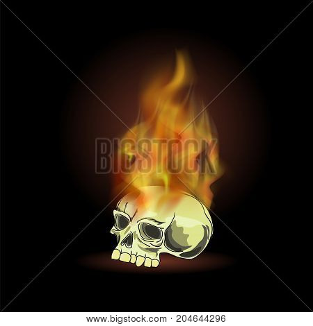 Burning Old Human Skull with Fire Flame on Black Background