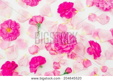 Floral pattern made of pink roses and petals isolated on white background. Flat lay, top view