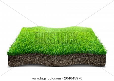 Illustration of square of green grass field over white background