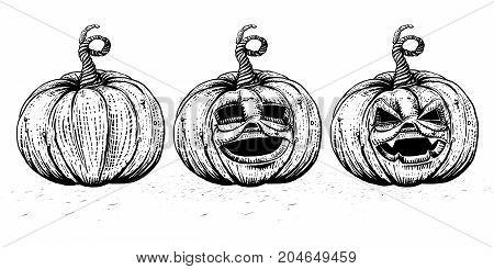 Hand drawn sketch illustration of funny cartoon pumpkins. Pumpkin characters and emotional smiles icons set. Halloween Jack Lantern sset. Emotions variants. Vintage style