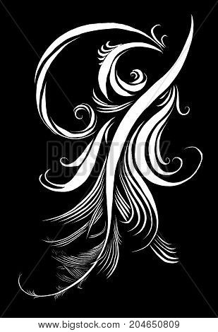 Feather calligraphic pen beauty elegance pattern background