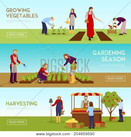 Set of horizontal banners with people growing vegetables, gardening season, harvesting, sale of crop isolated vector illustration