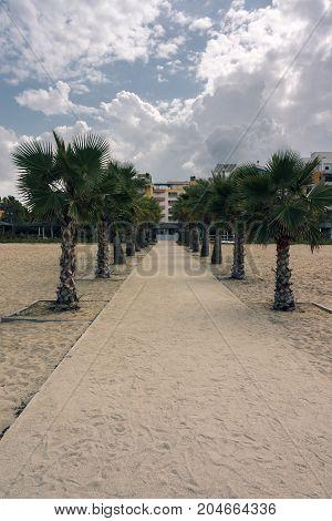 Sandy beach road through the palm avenue from the Adriatic Sea towards the houses. Albania. Golem