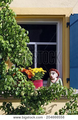 at home window with blue shutter flowers a woman's figurine and a pear tree espalier