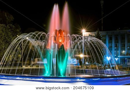 A beautiful illuminated city fountain A Red Tulip Flower at night
