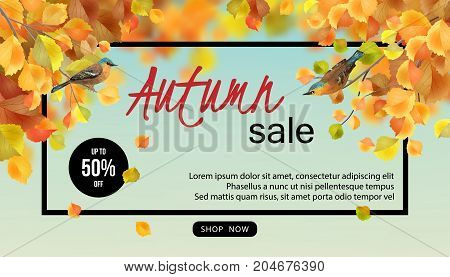 Autumn Sale Design. Vector fall banner for web or print. Flyer template with lettering and a frame