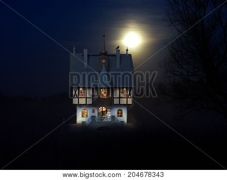 The night the light in the mystical castle. A woman in a vintage dress looking into the distance