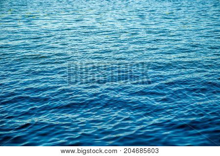 Photo of sea ripple in summer day
