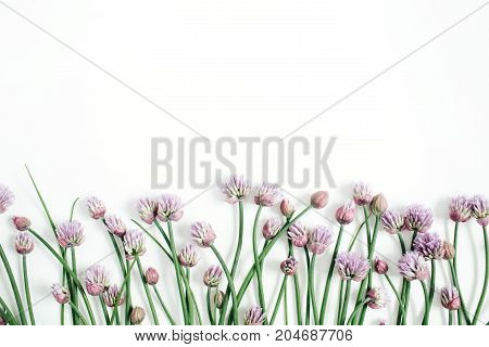 Floral pattern with wild flower green leaves branches on white background. Flat lay top view. Valentine's background