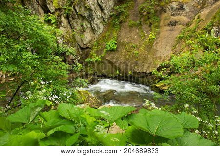 Creek flowing through rocks green forest. Kamianka river and Kamianetskyi waterfall in Carpathian mountains, National Park Skole Beskids, Ukraine. Stones, water