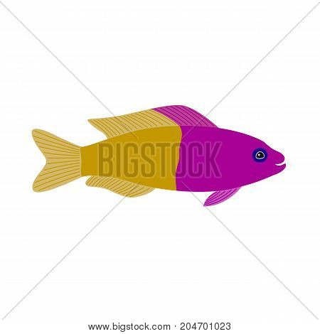 yellow purple fish. aquarium exotic fish tropical marine fish. vector