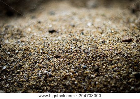 sea sand is the billionaires of the remains of sea creatures