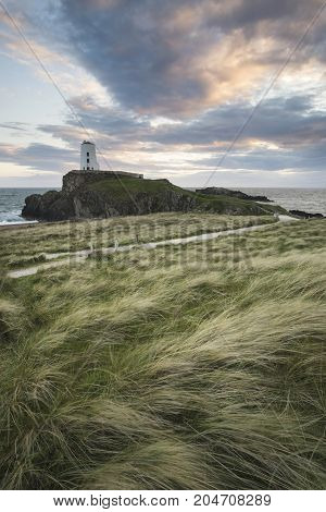 Landscape Image Of Twr Mawr Lighthouse With Windy Grassy Footpath In Foreground At  Sunset