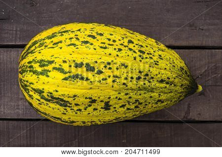 melon, mature melon, mature melon pictures on wooden floor,